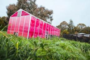 solar-greenhouse-400